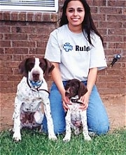 Two white with brown German Shorthaired Pointers are sitting next to each other in front of a house. One is a fullgrown dog and the other is a puppy. There is a girl sitting behind the puppy