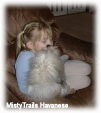 A blonde-haired girl is sitting in a chair and a white fluffy dog is licking her face.
