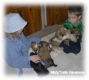 A girl and a boy are sitting crosslegged on a tiled floor and their are puppies sitting in each kids laps.