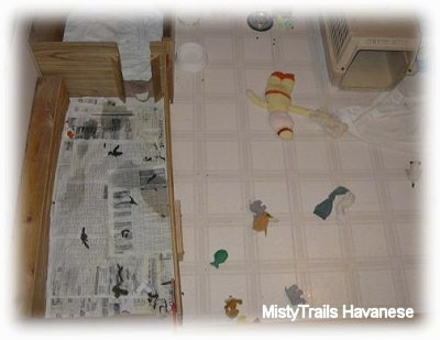 Top down view of a Whelping box with a potty area and toys and a crate in the play area.