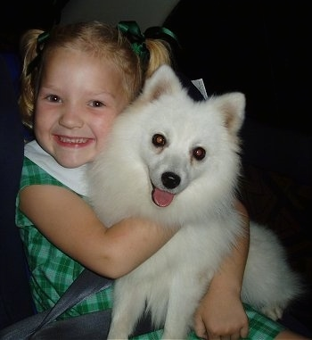 A girl in a green dress is hugging a Japanese Spitz in the back seat of a vehicle. The girl is smiling and the dogs tongue is out and it looks happy