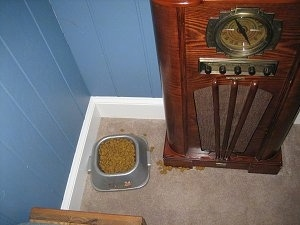 Food Bowl that is next to an Old Style Radio