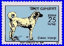 Kangal Dog on a Turkish postage stamp. A side-view of the dog on a blue background.