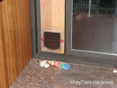 A doggy door leading to the outside and it has two toys in front of it.