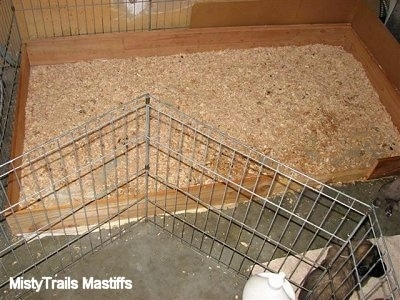 Wood chip potty area