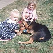 A girl in a pink polka dot dress is sitting behind a black and tan Bloodhound and in front of it is a girl in a blue polka dot dress. The Bloodhound is licking the girl in fronts hand.