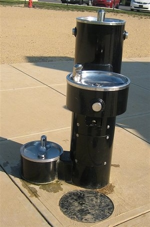 Water Fountain for Humans and Dogs