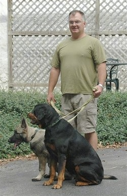 Rotweiler and Shiloh Shepherd puppy are sitting on concrete on leashes in front of their owner