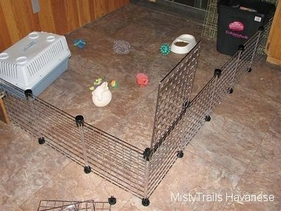 A wire rack enclosure that is setup to keep the puppies in and let the dam out.