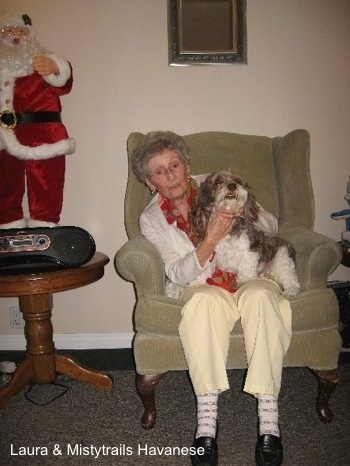 A lady is sitting in an arm chair and there is a gray and white dog sitting in her lap. To the left of them is a dancing Santa standing on a table.