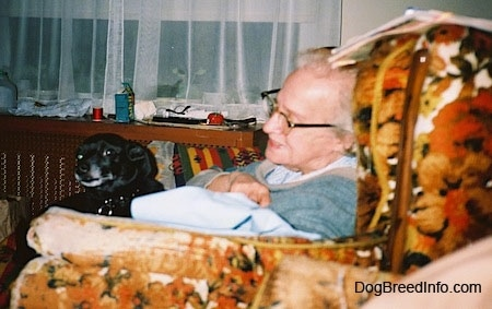 A lady is sitting in an arm chair and in her chair is a black dog sitting in her lap.