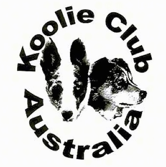 A logo with the words - Koolie Club Australia - are overlayed. There is the face of two Australian Koolies in the middle