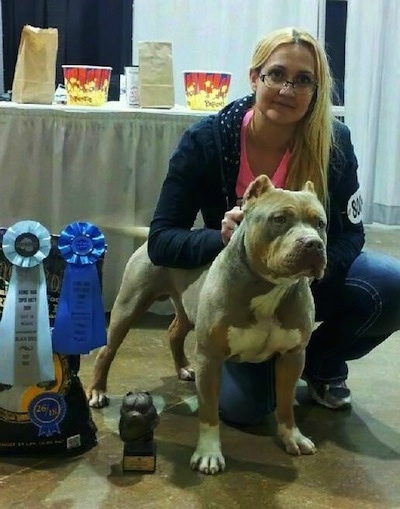 American Bully standing next to owner with ribbons