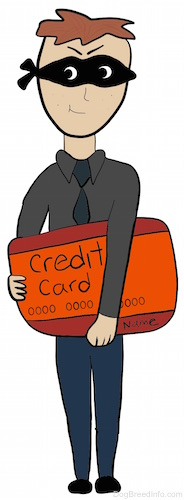 A drawn image of a burgular in a black mask with a large credit card in his hand