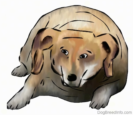 A drawn picture of a very fat Hawaiian Poi Dog laying down