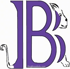 A drawn picture of a dog that is also the letter B