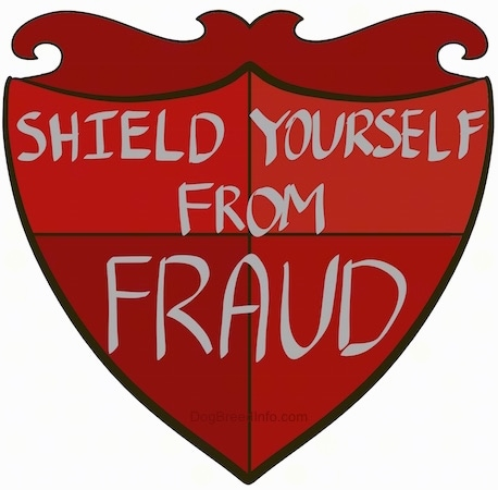 A drawn red shield that reads - SHIELD YOURSELF FROM FRAUD