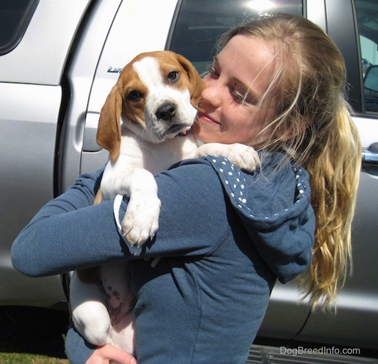 A blonde haired girl holding a little hound looking puppy in her arms with her face close to the pups head as she smiles at him.