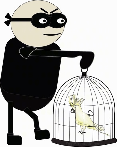A drawing of a man dressed in black with a black mask over its eyes holding a bird cage with a yellow cockatoo bird in it.