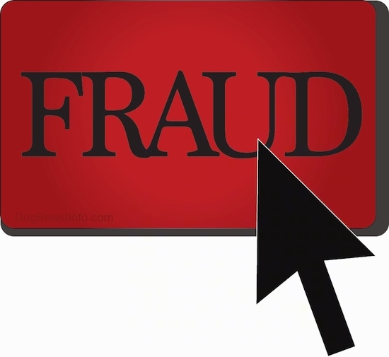 A drawn picture of a red fraud sign with a black arrow curser pointing to the word 'FRAUD'