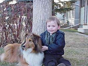 A boy in a blue jacket is sitting against a tree and next to him is a tan with white and black Shetland Sheepdog that is looking to the left.
