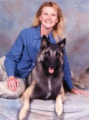 Jake the Belgian Tervuren laying down in front of a back drop taking a picture with his owner