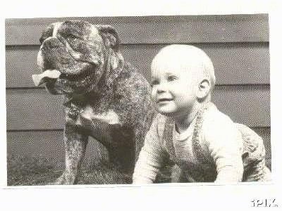 A picture of a brindle Bulldog that is sitting next to a toddler, in front of a house.