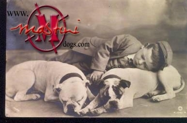 A picture of a Boy sleeping with two bulldogs.