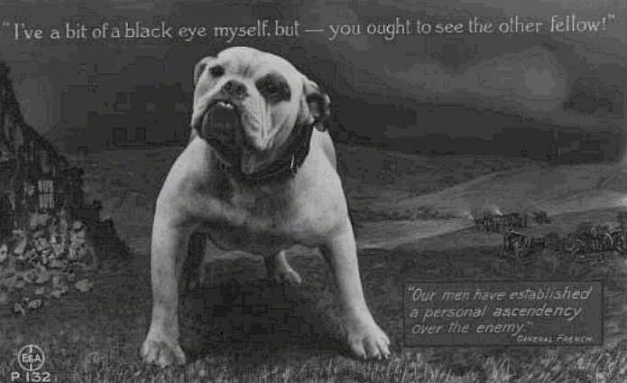 A picture of a Bulldog that has its head tilted to the right and Overlaid on the picture are the words, 'Eye the Bulldog in a field. 'I've a bit of a black eye. but- you ought to see the other fellow!' 'Our men have established a personal ascendency over the enemy. - General French'