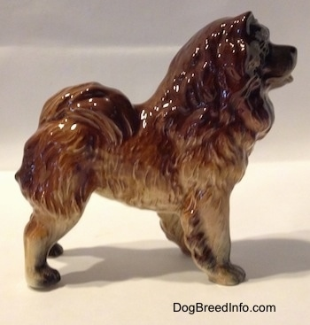 The right side of a brown with black Chow Chow figurine. The figurine has its tail across its back.